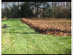 Contact John Wright's Lawn Services for LEAF REMOVAL Sarnia Sarnia Area image 8