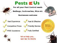 Rats, Mice, Bed Bugs and Cockroaches treated. Guaranteed Fast Pest Control & Exterminator