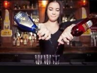 Experienced Bartender/Manager/Operator Wanted