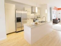 2Bdr luxury suite move in now November rent free