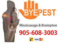 PEEL BED BUG, MOUSE & RAT EXPERTS. PEST CONTROL. 905-608-3003