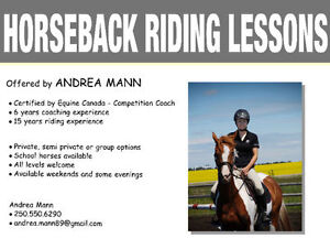 English Riding Lessons - SCHOOL HORSES AVAILABLE