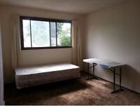 Large Room for Rent in Crescent Height $500/day near SAIT & UC.
