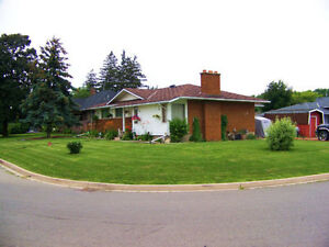3+1 BEDROOM HOUSE WITH  1 BED,rental or in law suite down