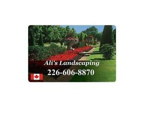 Fall Clean-Up! Affordable Landscaping Services! Cambridge Kitchener Area image 2