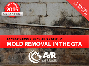 Toronto (GTA) - Mold Removal / Remediation, Mould Inspections.