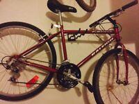 Raleigh - ambush - 18 speed mountain bike