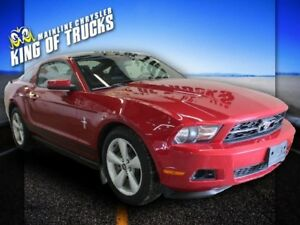 2011 Ford Mustang Mustang | Leather | Heated Seats | Traction Co