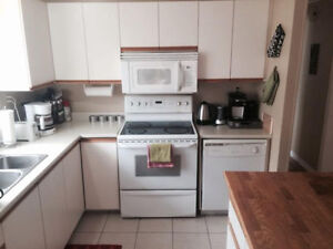 Student Roommates Wanted!