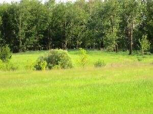 4.99 acres now reduced! Build your dream home in Beaver County!