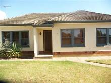 3 bedroom house Edwardstown Marion Area Preview