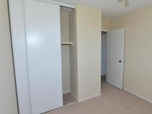 Beautifully Designed 1 Bedroom Suites -One Month Free Kitchener / Waterloo Kitchener Area image 5