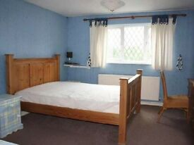 Small double room for one person in sharing house is available now