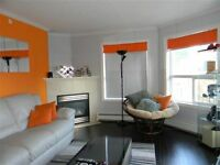 IDEAL FOR WORKING DOWNTOWN PROFESSIONALS 2BDR LUXURY CONDO