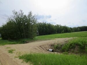 REDUCED! 4.99 acres for your dream home in Beaver County Strathcona County Edmonton Area image 2