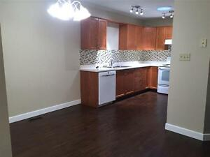 Newly Renovated Bungalow in 45+ Complex, NO CONDO FEES!