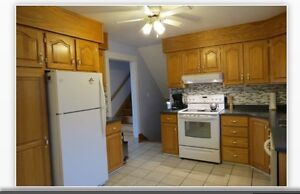Oak kitchen cabinets and counter top