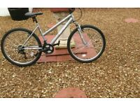 Ladys mountbike