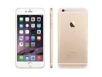 iPhone 6 in gold..
