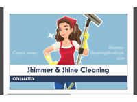 Cleaner/housekeeper/shimmer&shine Cleaning service