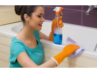 Domestic Cleaner available,Cleaning Lady offering,End of Tenancy Cleaning,Spring Clean,Carpet Clean