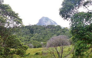 Lifestyle Block With Mountain Views in Noosa Hinterland Cooran Noosa Area Preview