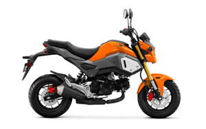 NOW IN STOCK! 2019 Honda Grom MSX125 Mini Naked Sport Bike!