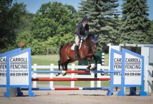 Quantum Farm has Competitive and Experienced Horses For Lease