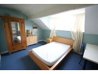 1 lovely room available over January!