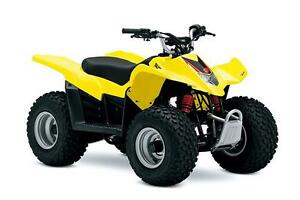 Suzuki QuadSport 50