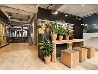 Hairdressing Assistant, Hampstead