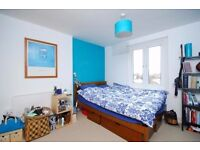 Amazing 1 bedroom flat to rent in Maida Vale Ideal for single or couple Available in February