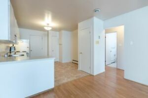 Two Bedroom Lower Level Apartment - Available Immediately