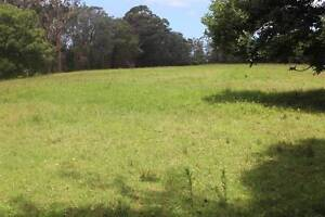 AGISTMENT AVAILABLE ON  GREEN ACRES AT OURIMBAH Ourimbah Wyong Area Preview