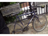 Adult medium gears Bike with lock and accessories