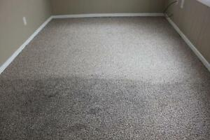 CARPET STEAM CLEANING - UPHOLSTERY -TILE AND GROUT Kitchener / Waterloo Kitchener Area image 2