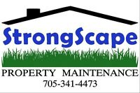 SPRING CLEAN UP LAWN CARE Fully Insured
