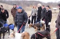 NEW DOG TRAINING CLASSES - Group Obedience and Socialization