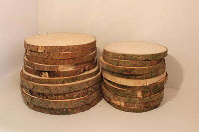 FICHTE Restposten Holzscheiben Astscheiben Baumscheiben Floristik 20St. 10-16cm  ()