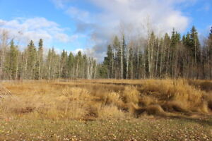 5 acre lot for sale in Houston BC