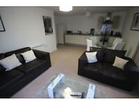 Immaculate 2 bed apartment. New furniture and decoration.
