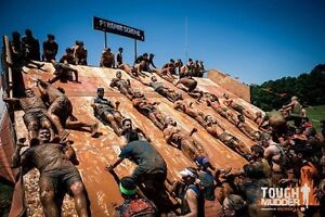Tough Mudder (21km) South East Queensland Toowong Brisbane North West Preview