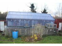 Pigeon loft shed
