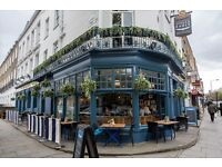 The Spread Eagle in Camden is looking for bar staff! £7.20 p/h – come and join our wonderful team