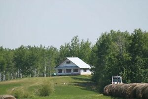 Hunting cabins on 320 acres of land