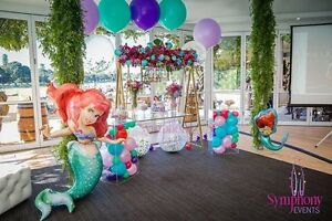 LOWEST PRICE PARTY HIRE AND DECORATION Ryde Ryde Area Preview