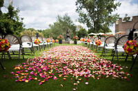 Awesome-Blossoms......Wedding Flowers