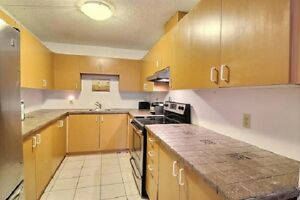 Beautiful 2-Bedroom Condo for Rent with Ideal Downtown Location
