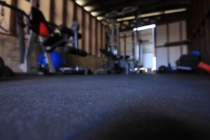 MASTER TRAINER & HOME GYM FULLY EQUIPPED IN LIDCOMBE Lidcombe Auburn Area Preview