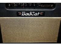 Bad cat cub 3 15 watt combo. Trade p/x